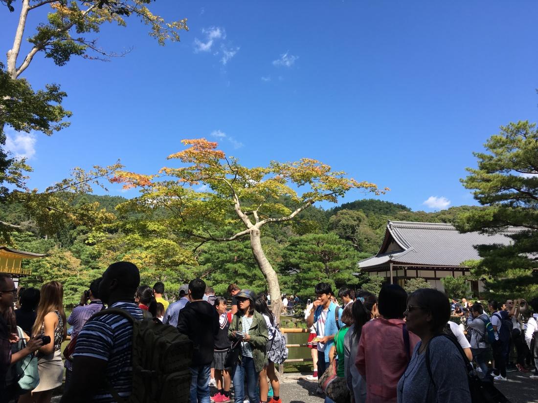 Photo 9-30-17, 09 39 56